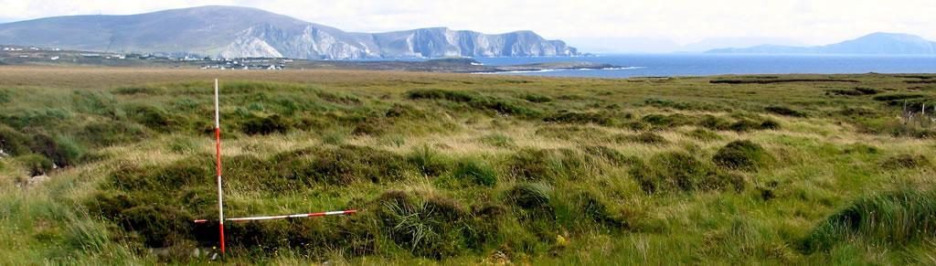 Tawnaghmore Dig Site